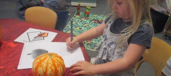 Orange Room Pumpkin Exploration!